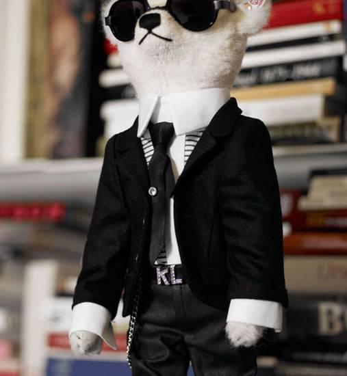 Meet Teddy Karl