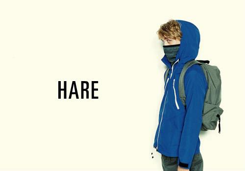 Hare Fall 2008