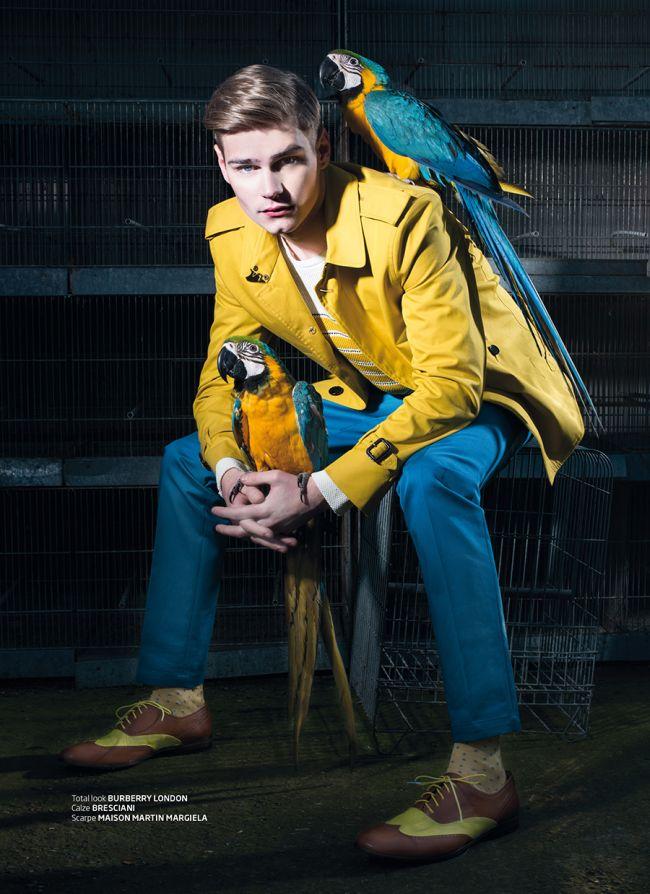 Ralf Javoiss Makes Nice with Parrots for Italian Maxim