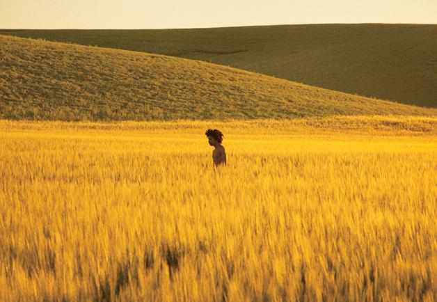 Golden Grassland, 2013 by Ryan McGinley