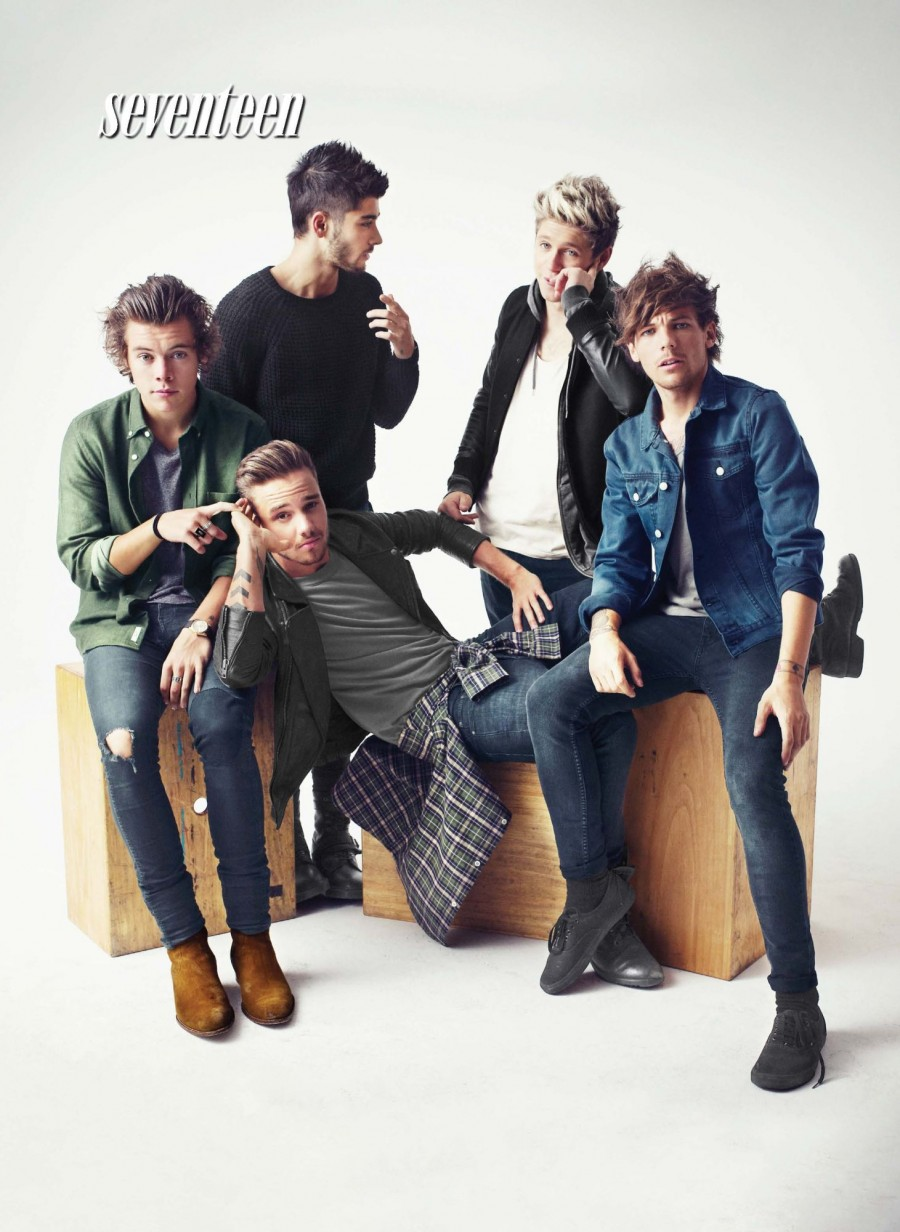 one direction photo shoot for seventeen november 2014