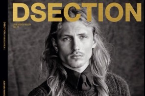 Viggo-Jonasson-DSection-Cover