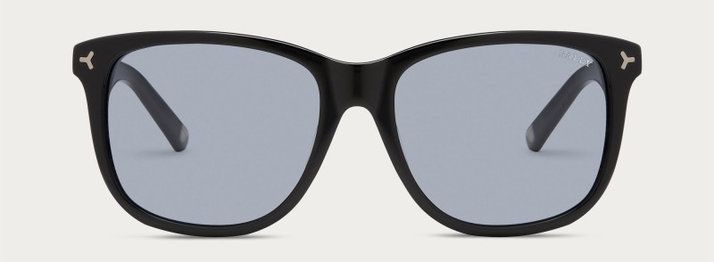 Bally D Frame Sunglasses in Black.