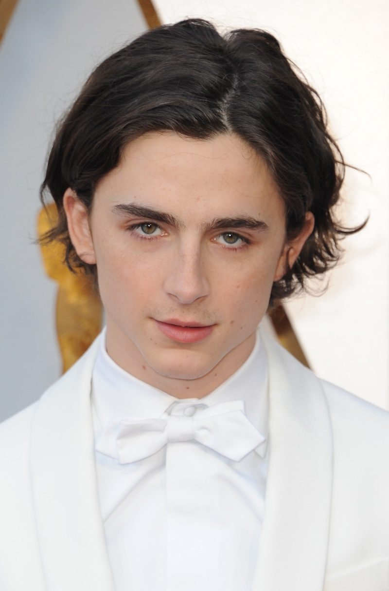 Timothee Chalamet at the 90th Annual Academy Awards