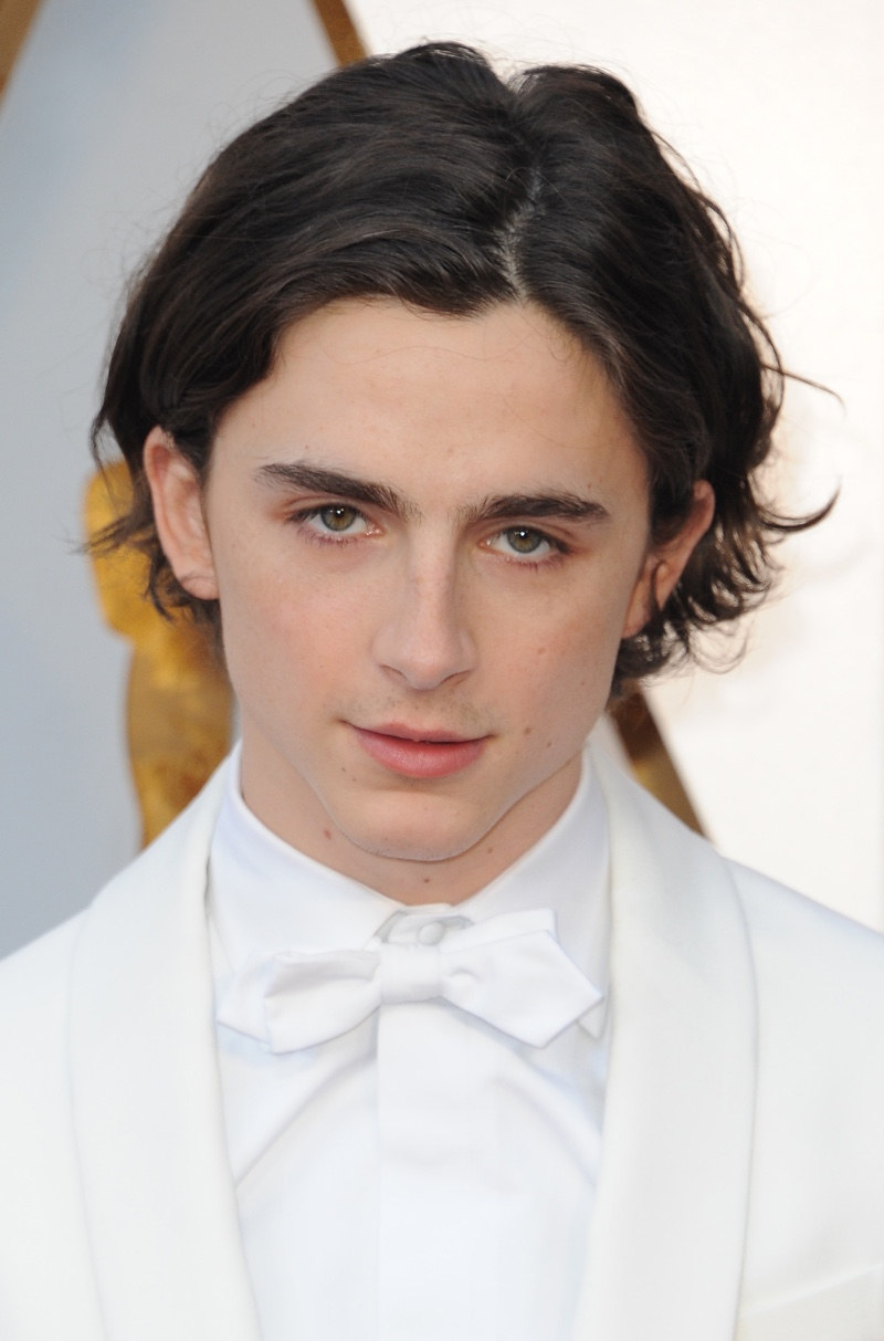 Timothee Chalamet at the 90th Annual Academy Awards wearing a white bow tie.