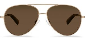 Warby Parker Sunglasses - Crossfield in Polished Gold