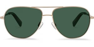 Warby Parker Sunglasses - Halford in Polished Gold