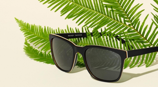 Warby Parker Barkley Sunglasses in Black Matte Eclipse