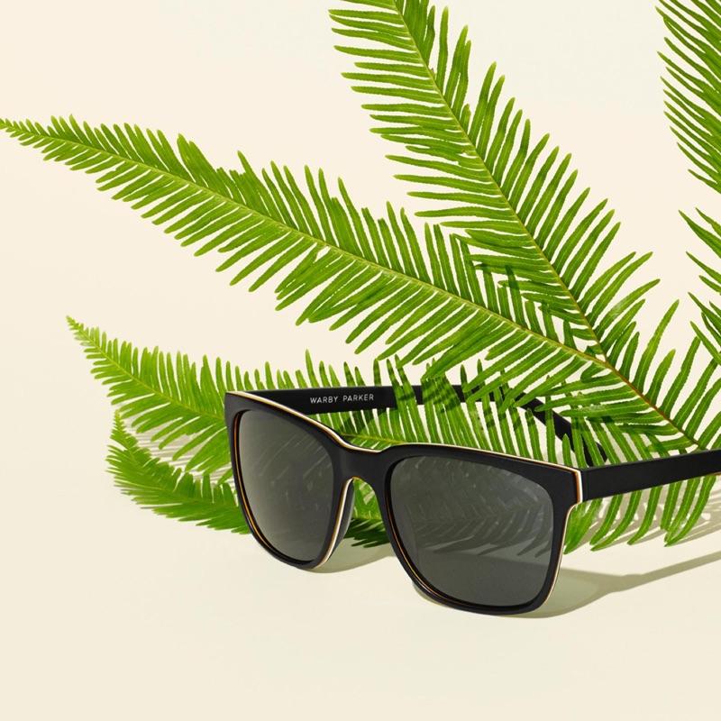 Warby Parker Barkley Sunglasses in Black Matte Eclipse
