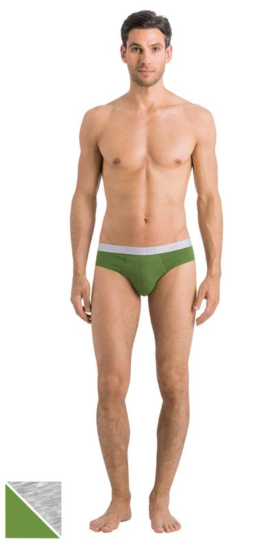 HANRO (73075) Cotton Essentials Briefs 2-Pack - Concrete/atlantic S