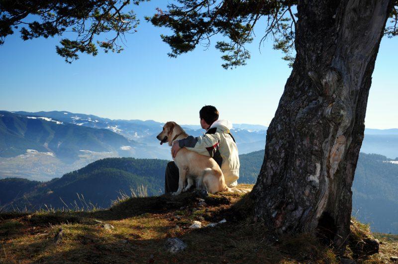 Man Dog Outdoors
