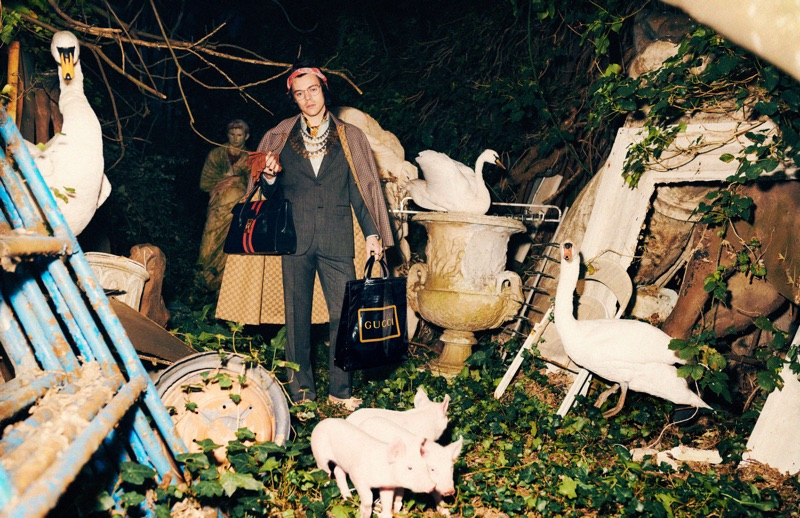 Harmony Korine photographs Harry Styles for Gucci's pre-fall 2019 tailoring campaign.
