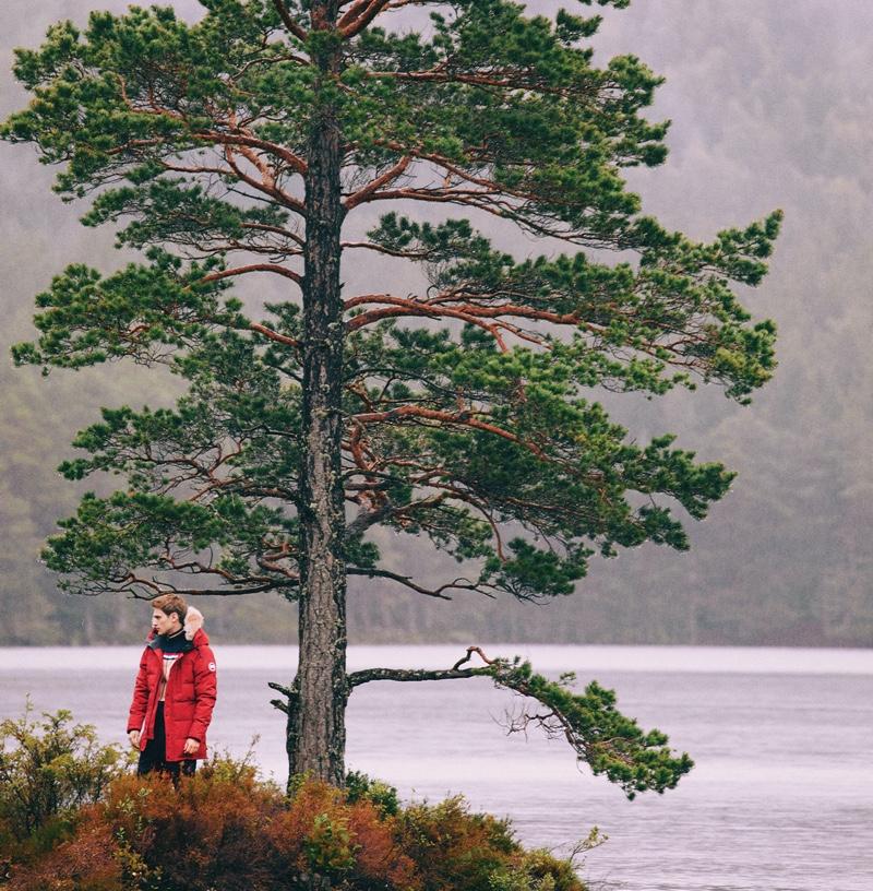 Into the Woods: Bo Develius for Harvey Nichols