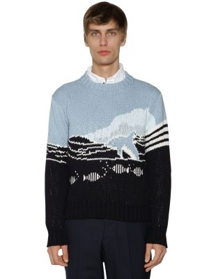 Dolphin & Sea Knit Cotton Sweater