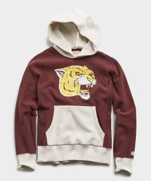 Champion Cat Graphic Popover Hoodie in Deep Burgundy