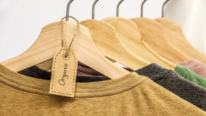 Sustainable Fashion Organic Cotton T-Shirts