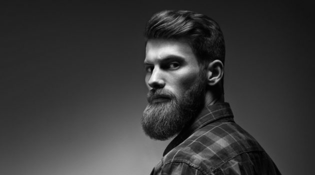 Attractive Male Model Beard Groom Hair
