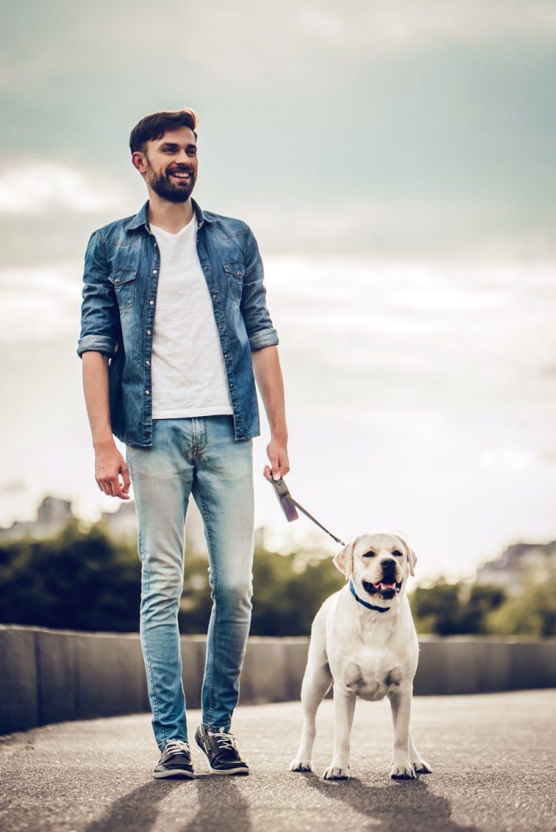 Man Walking Dog Wearing Denim