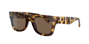 Valentino Man VA4045 - Frame color: Tortoise, Lens color: Brown Gradient, Size 50-22/145
