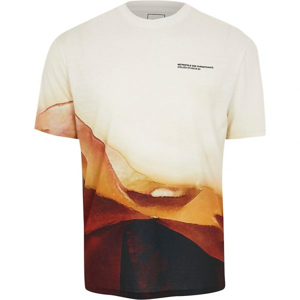River Island Mens Stone landscape print short sleeve t-shirt