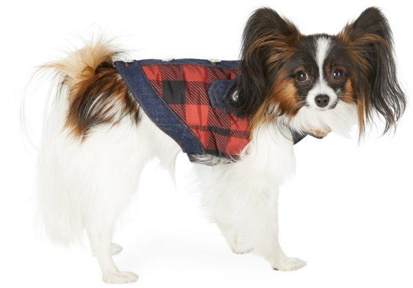 Dsquared2 Black & Red Poldo Dog Couture Edition Small Toronto Vest