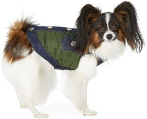 Dsquared2 Green Poldo Dog Couture Edition Small Vancouver Vest