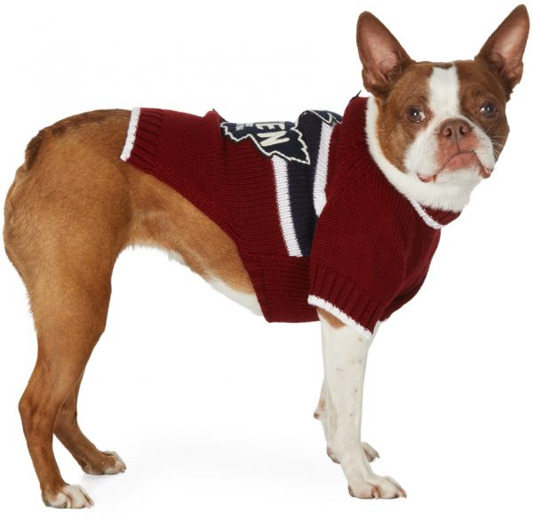 Dsquared2 Red Poldo Dog Couture Edition Quebec Sweater