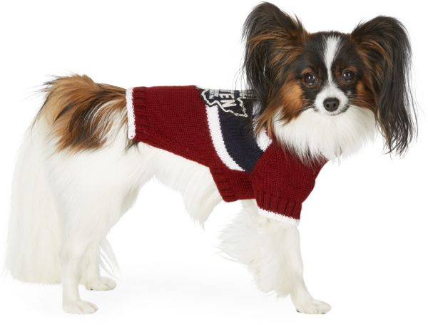 Dsquared2 Red Poldo Dog Couture Edition Small Quebec Sweater
